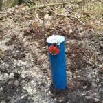 obudowa piezometru na terenie gminy Kaczory